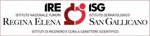 logo-IRE-ISG