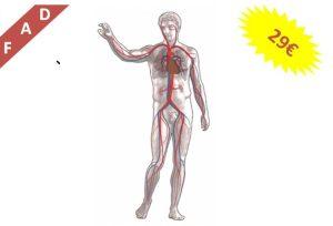 cardiovascolari